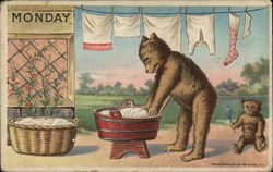 Monday Bear Doing Laundry