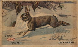 Shoot DuPont Powders Jack Rabbit