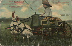 The Birdsell Farm Wagon