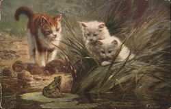 Three Cats Find a Frog
