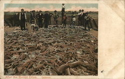 Men Standing in a Field of Dead Rabbits