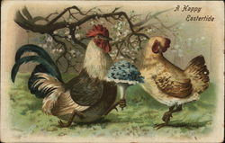 Rooster Courting Chicken