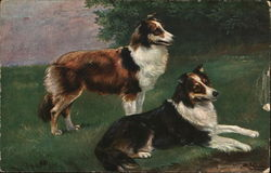 Pair of Dogs on Grass