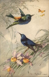 Two Blue Birds Near Two Yellow Butterflies