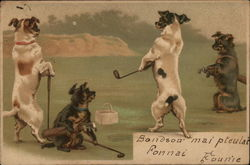 Dogs on the Fairway