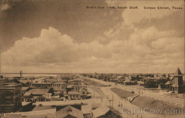 Bird's Eye View, South Bluff Corpus Christi Texas