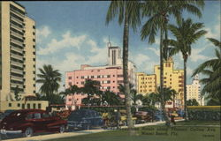Luxurious Hotels along Tropical Collins Ave.