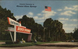 Colorful Entrance to Florida's Silver Springs