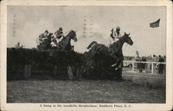 A Jump in the Sandhills Steeplechase