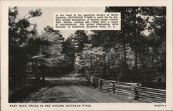Many Such Trails In and Around Southern Pines