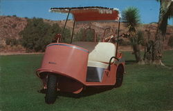 Well Appointed Pink Golf Cart