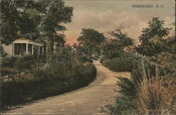 A Road in Pinehurst
