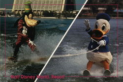 Would You Believe Goofy and Donald on water skis?