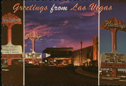 Hotel Flamingo Postcard