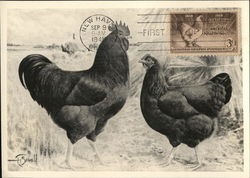 Centennial of the American Poultry Industry