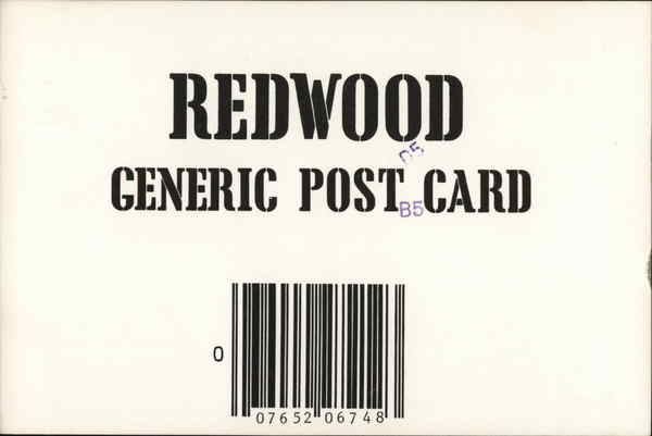 Redwood Generic Post Card Redwoods California