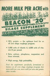 Beacon 20 Silage Supplement