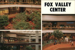 Fox Valley Center