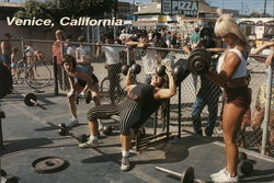 Muscle Beach - Women Bodybuilders