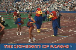 The Crimson Girls of the University of Kansas with Jayhawks