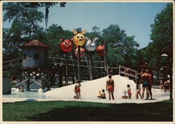 Silver Springs' Wild Waters