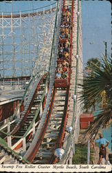 Swamp Fox Roller Coaster