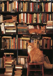 Cats at Work - Gotham Book Mart & Gallery