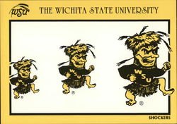 The Wichita State University
