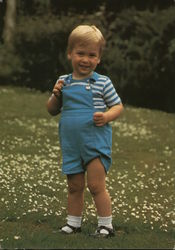 HRH Prince Williams of Wales on his Second Birthday