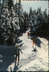 X-Country Ski Trails
