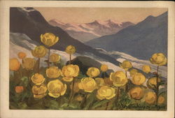 Yellow Poppies with Mountains in Background