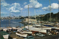 View of Marina Postcard