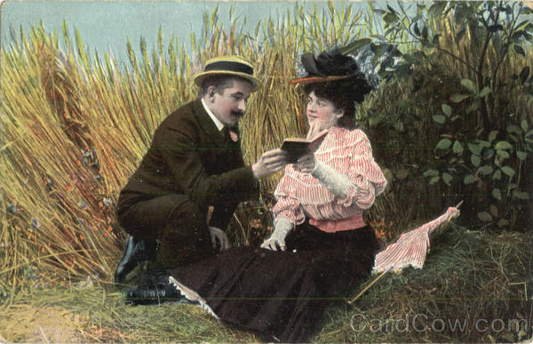Couple Reading in a Field Romance & Love