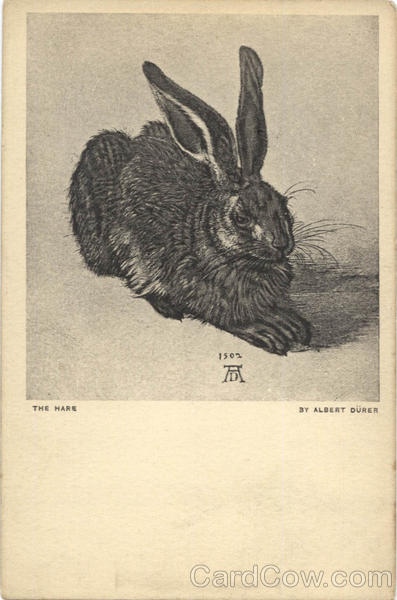 The Hare - Albert Durer Art