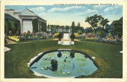Lily pond in George Eastman's Gardens Postcard