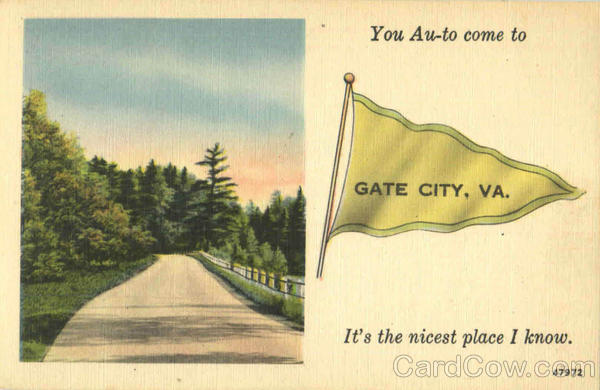 You Au To Come To Gate City Virginia Banners & Pennants