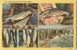 Fishing Is Good In The Northwest Postcard