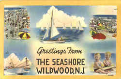 Greetings From The Seashore Wildwood