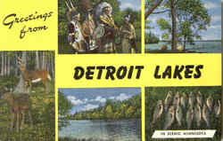 Greetings From Detroit Lakes Postcard