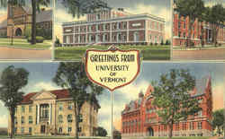 Greetings From University Of Vermont Postcard
