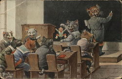 Cats in Classroom