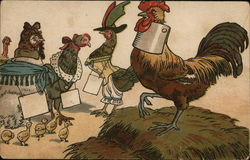 Dressed Chickens & Rooster - Suffrage?
