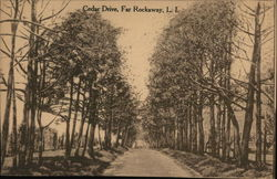 Cedar Drive