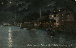 Lake Pavilion, Nolan's Point