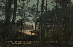 Where the Green Trout Strike