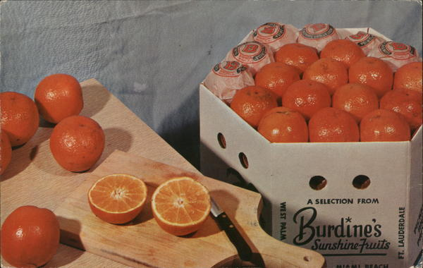 A selection from Burdine's Sunshine Fruits Miami Florida