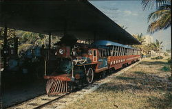Sight Seeing Train, Hugh Taylor Birch State Park