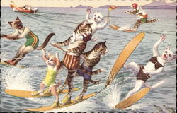 Cats Waterskiing
