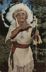 Chief Evergreen Tree