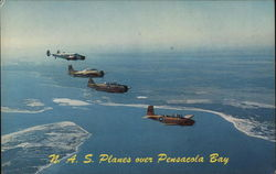 N.A.S. Planes over Pensacola Bay